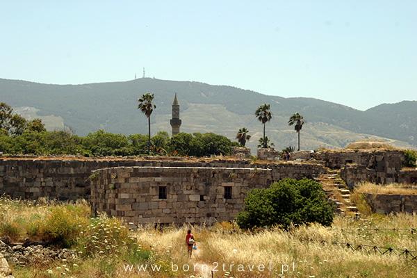 Średniowieczne mury, minaret, palmy i wzgórza w oddali.