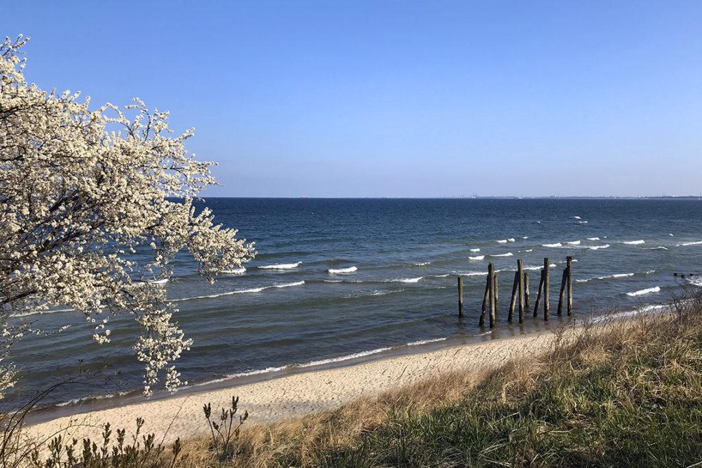 Wiosna w Orłowie!