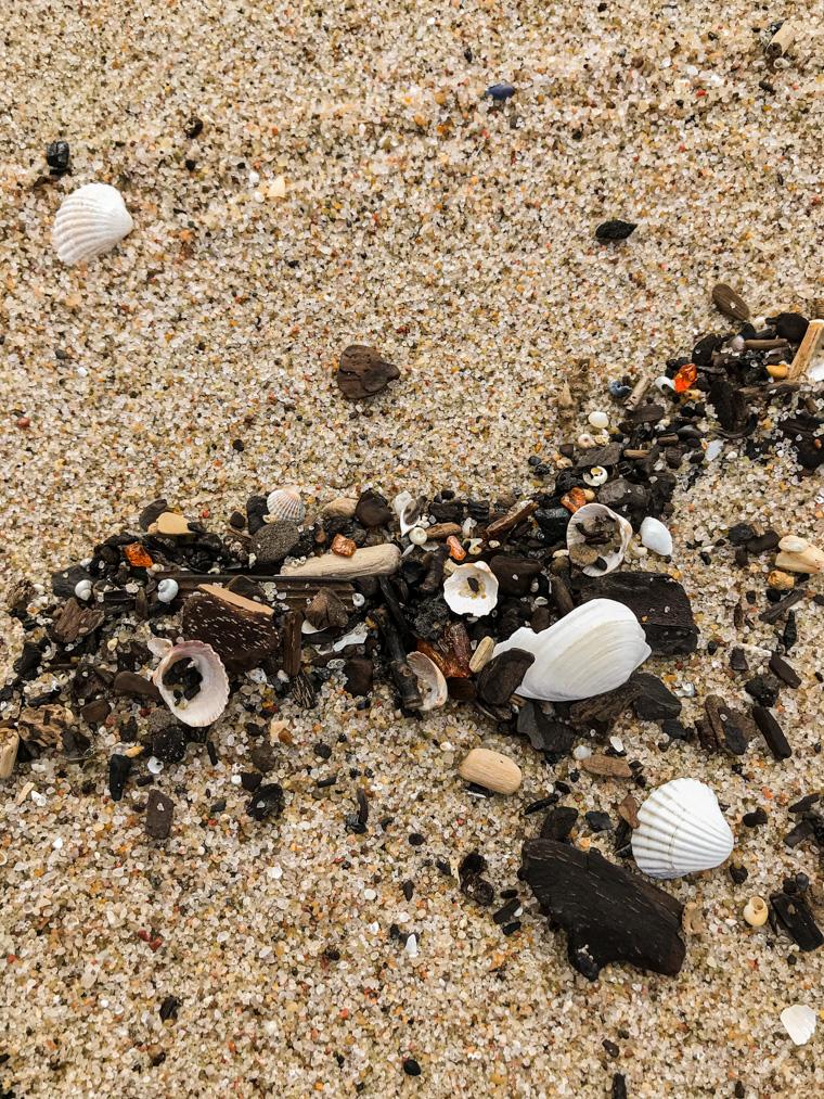 Bursztyny na plaży. Krynica Morska, 28 kwietnia 2020