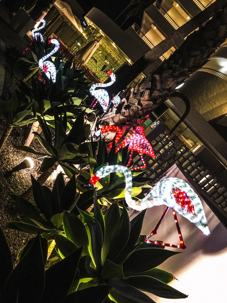 Świąteczne dekoracje, wersja kanaryjska. Zdjęcie od mamy. Gran Canaria, grudzień 2020