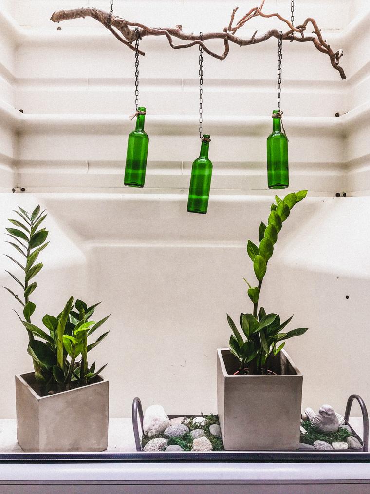 Powiew świeżości w Gdynia Underground - nowe roślinki (Zamiokulkas zamiolistny). Za poradę w kwestii ich wyboru dziękujemy Kindze! ❤