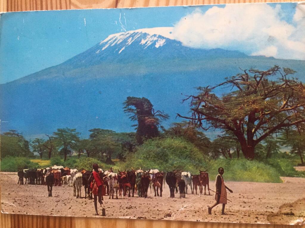 Pocztówka od Dziadka z Kilimandżaro w tle.