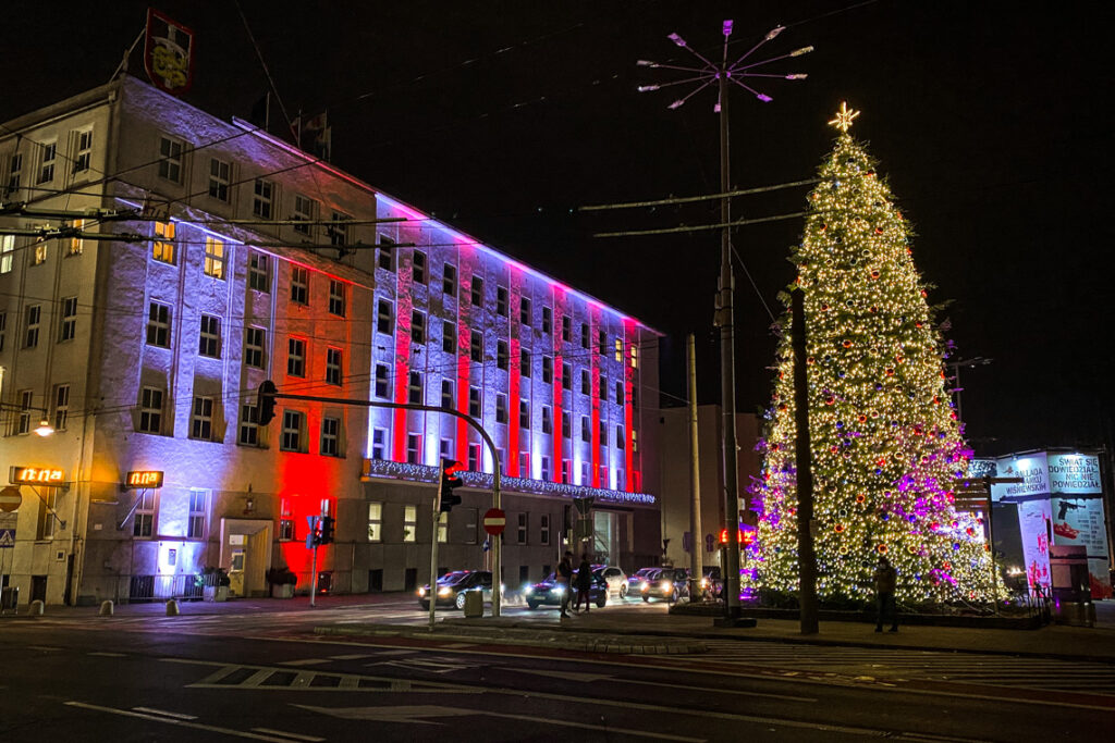 Przepiękna naturalna choinka i Urząd Miasta w barwach biało-czerwonych. Gdynia, 15 grudnia 2020